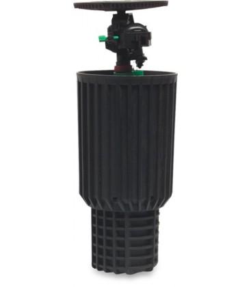 Naan 805 pop-up